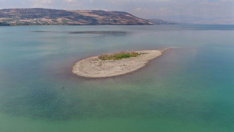 האי בכנרת הופיע שוב ומסמן את מפלס המים הנמוך