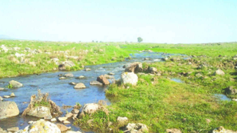 פארקים, שמורות טבע וגנים לאומיים בגולן