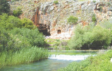 שמורת טבע נחל חרמון (הבניאס)