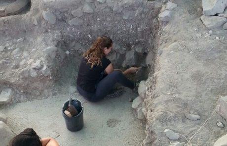נוער חופר – לראשונה בגולן, משתפת רשות העתיקות בני נוער מהגולן בחפירות הארכיאולוגיות