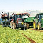 """השקה בגליל ובגולן """"המרכז לחקלאות חכמה״"""