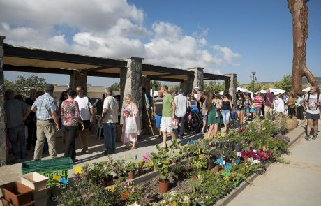 תיירות הגולן – יותר אטרקציות, יותר מטיילים