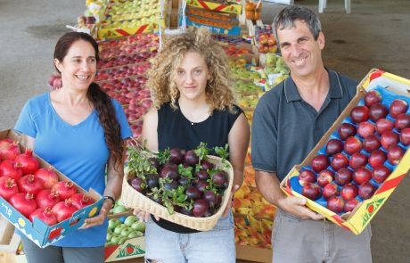 זני העתיד רימונים ותפוחים חדשים