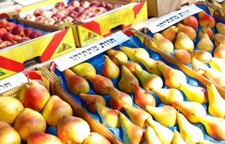זני פירות חדשים, המפותחים בגליל ובגולן, יכבשו את השווקים
