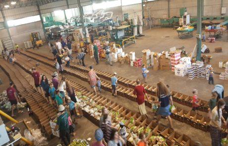 חסד-מפעלי חלוקת מזון בגולן