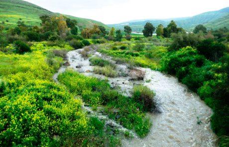 מסלול טיול קסום במקורות המים בכנרת