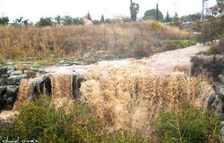 זרימות ומפלים בגולן – חורף 2020