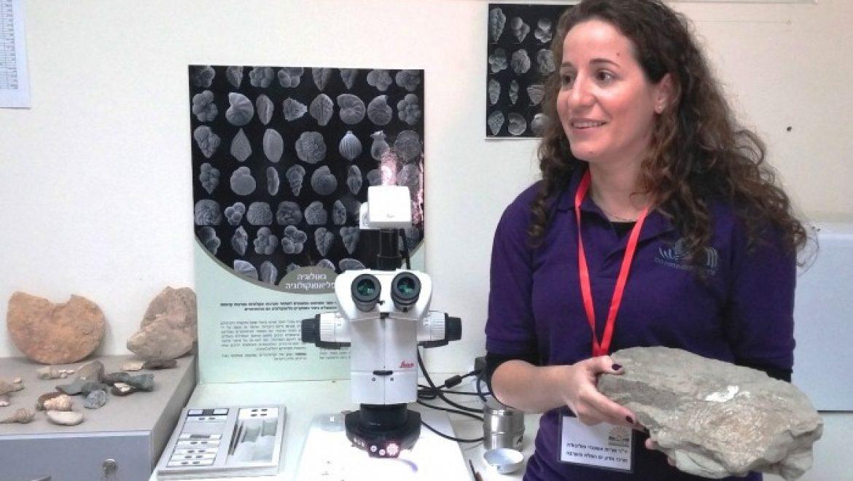 הושק אתר האינטרנט הראשון בארץ ובעולם לזיהוי מאובנים