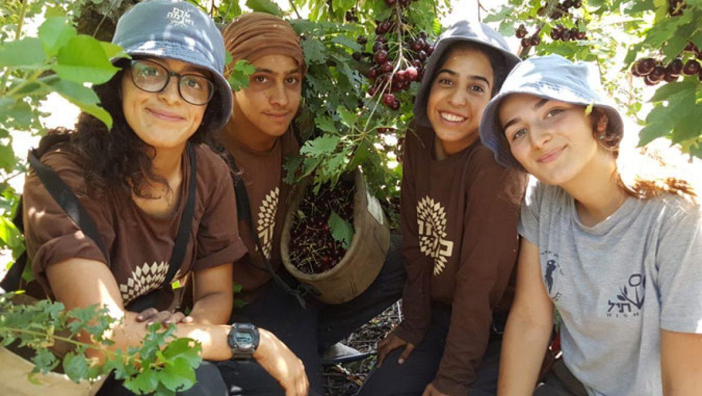 """""""אדם ואדמה"""" –  בית ספר תיכון חדש בגולן"""