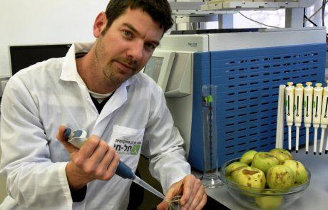 חדש: על קמח תפוחים שמעתם?