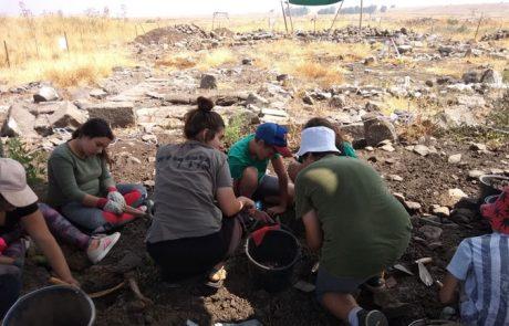 מוזמנים להתנדב לחפירה ארכיאולוגית קהילתית